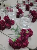 Hammer 2013 Carnation Layout
