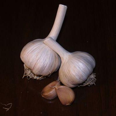 Salt spring Island Garlic