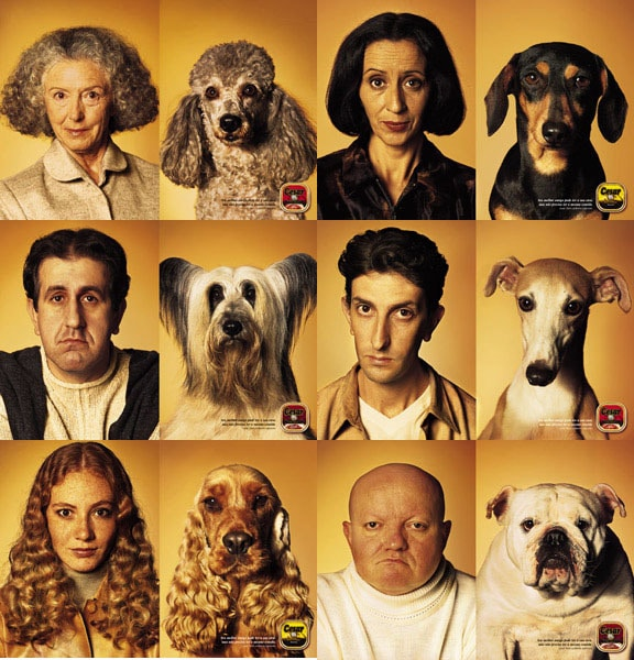 A Cesar Dog Food Campaign focused on how we look like our dogs.