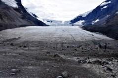 Athabasca Glacier, Columbia Icefield, B.C.