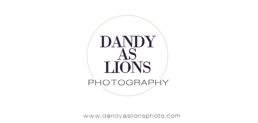 Dandy As Lions Photography