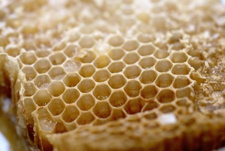 honeycomb-5-1156740