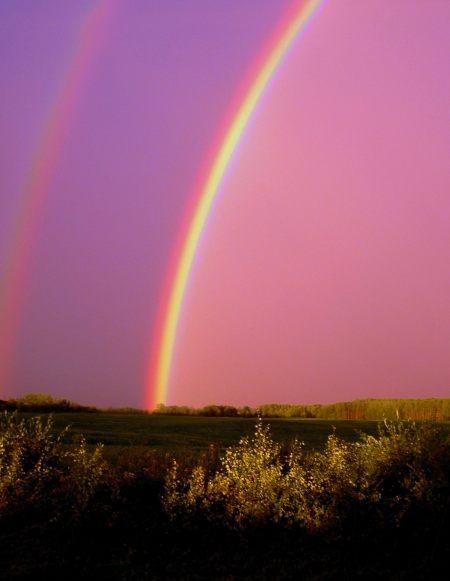 I can sing a rainbow, sing a rainbow, sing a rainbow too!