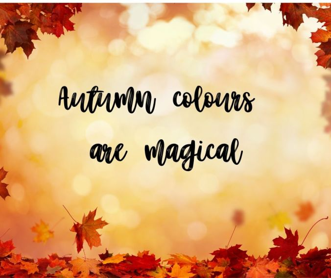 Autumn colours are magical