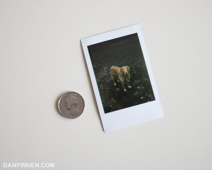 Fuji Instax Mini is super affordable, but also very small, limiting its use somewhat.