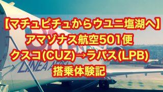 【マチュピチュからウユニ塩湖へ】アマゾナス航空501便 クスコ⇒ラパス 搭乗体験記