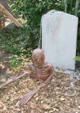 body out of grave1.jpg