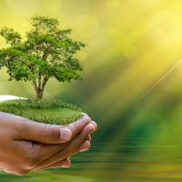 How You Can Lead a Sustainable and Socially Responsible Lifestyle