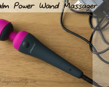 PalmPower Wand Massager