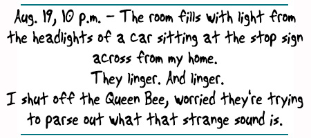 """Hot Octopuss Queen Bee Diaries: """"Aug. 19, 10 p.m. - The room fills with light from  the headlights of a car sitting at the stop sign  across from my home.  They linger. And linger. I shut off the Queen Bee, worried they're trying  to parse out what that strange sound is. """""""