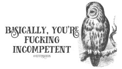 """Effinbirds: """"Basically you're fucking incompetent"""""""