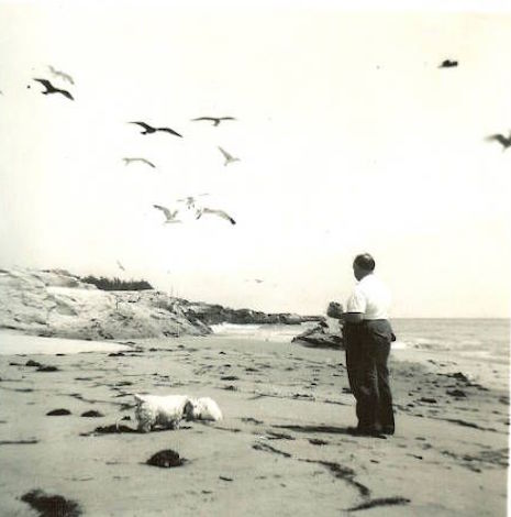 Alfred Hitchcock on a Santa Cruz beach, with his Sealyham terriers, Geoffrey and Stanley Cruz