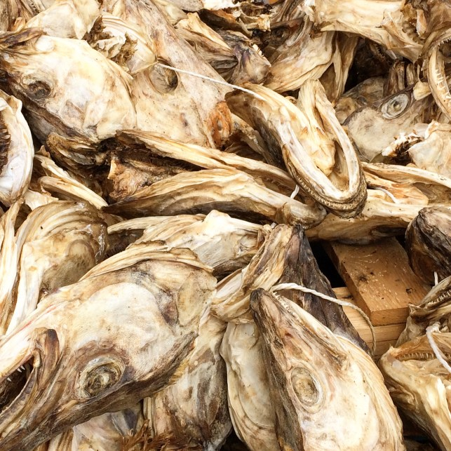 Fischköppe