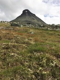 """Die """"Riesen"""" in Jotunheimen"""