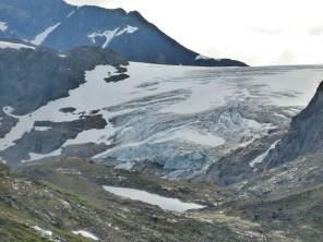 Gletscherausläufer im Sognefjellet