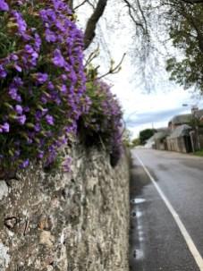 schottische Straße