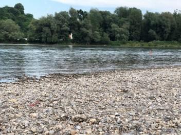 Baden in der Donau