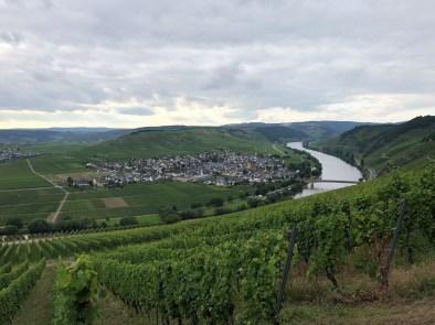Moseldorf