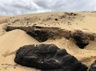 Dune de Pilat : So wird Kohle hergestellt.
