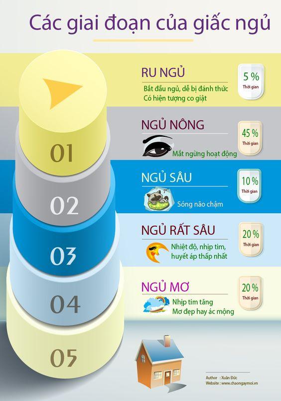 Infographic các giai đoạn của giấc ngủ