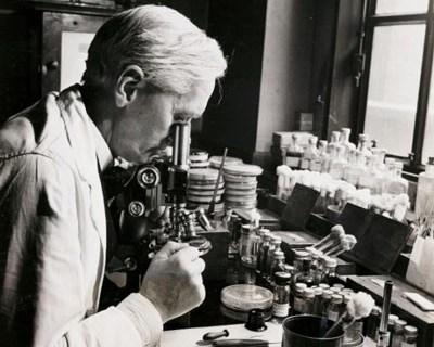 1001 thắc mắc: Ai là người tìm ra kháng sinh Penicillin? - Ảnh 1.