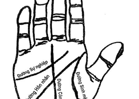 Xem duong chi tay, coi boi duong chi tay, xem chi tay, xem ban tay xem tuong ban tay