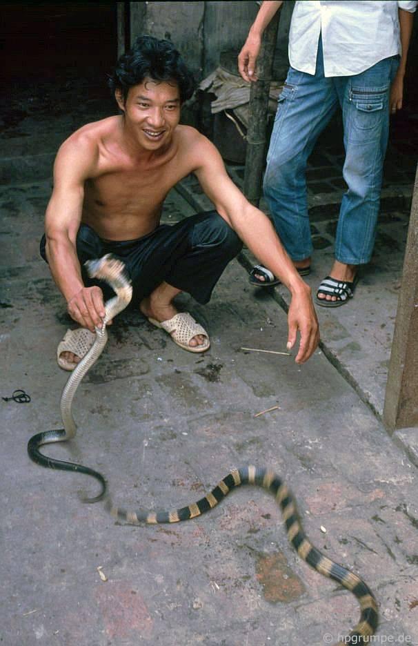 Lê Mάt: thưσng nhân rắn