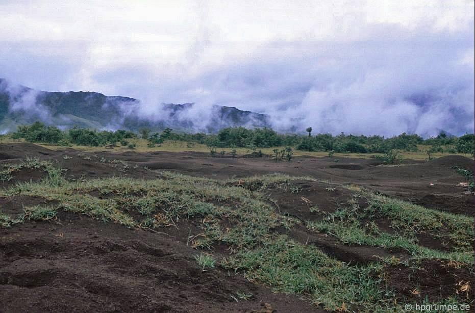 Khe San: Đất bị tàn phά