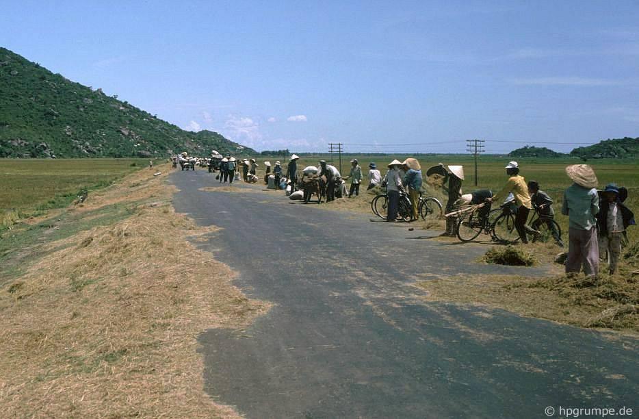 Quốc lộ 1 phίa Nam Qui Nhσn làm sàn đập