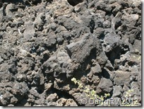 Cooled lava field