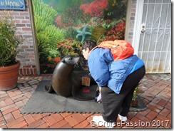Kissing a Catalina seal