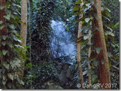 Fern Grotto waterfall
