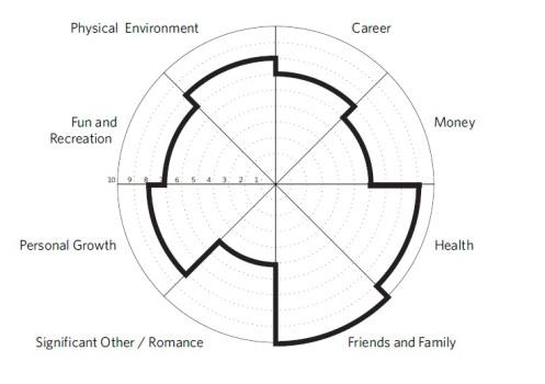 life-wheel-sample