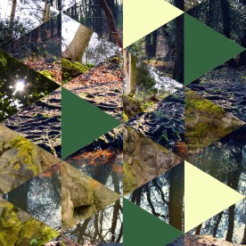 forest pattern1