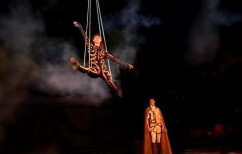 magic-circus-show-17