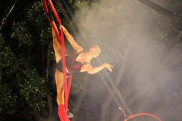 magic-circus-show-19