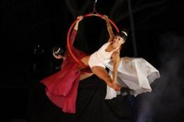 magic-circus-show-21