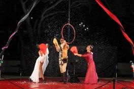 magic-circus-show-22
