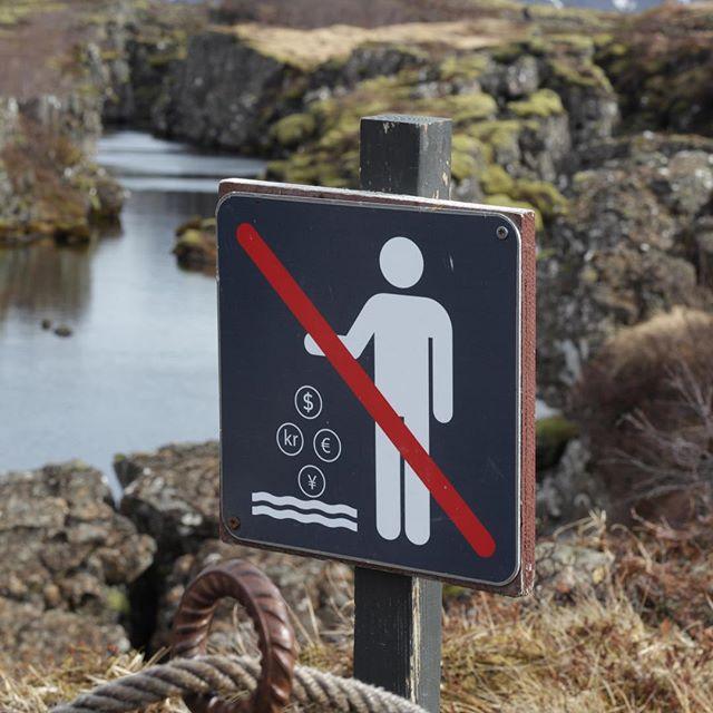 I miss Iceland