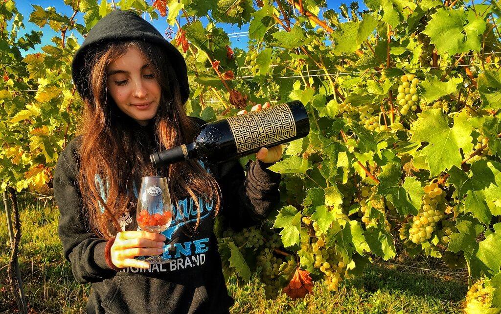 podgorii jidvei vin premium castelul jidvei traminer sauvignon blanc