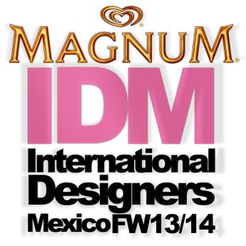 Logo IDM FW1314