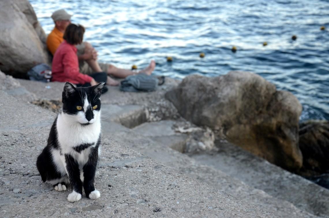 porto - dubrovnik - croácia - pontos - turísticos