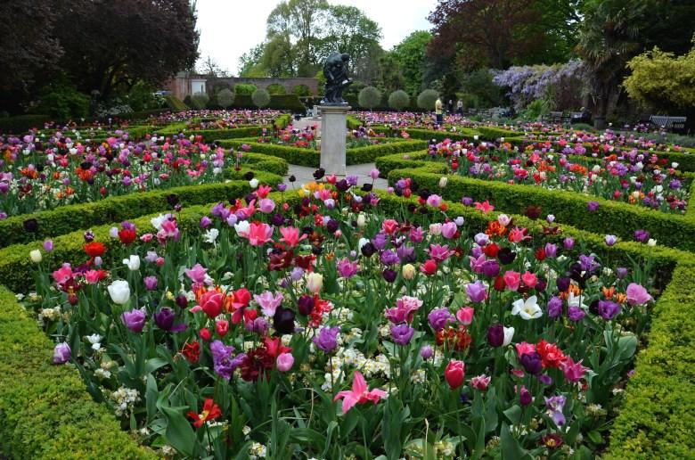 tulipas - holland park - parques de londres - turismo - inglaterra