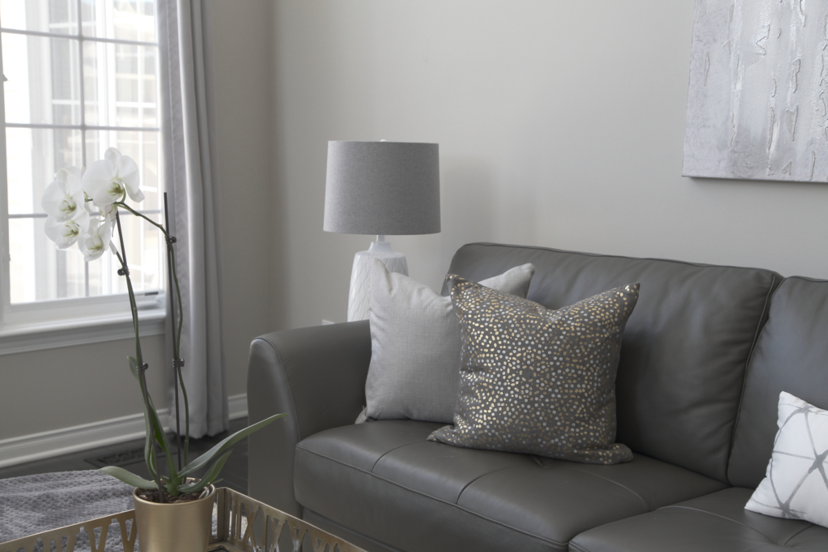 Staging With Revere Pewter HC-172 Benjamin Moore - Daniela ...
