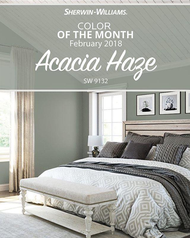 February 2018 Colour Of The Month Sw Acacia Haze Daniela