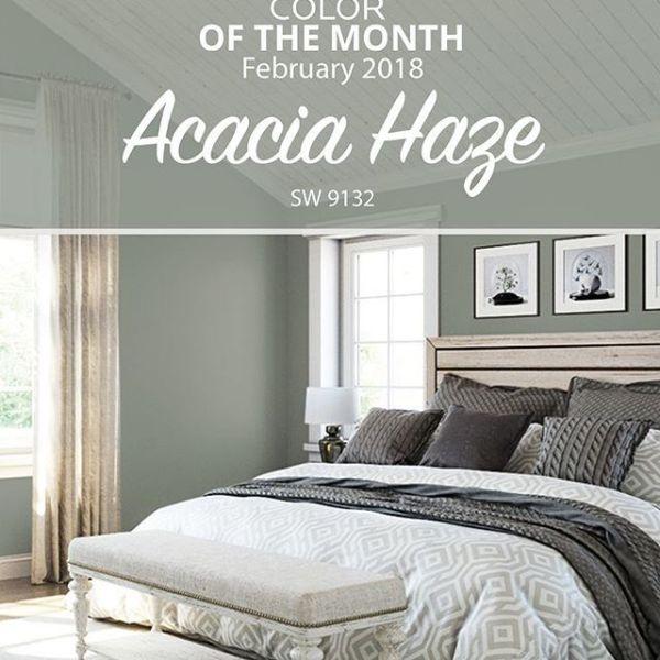 February 2018 Colour of the Month-SW Acacia Haze
