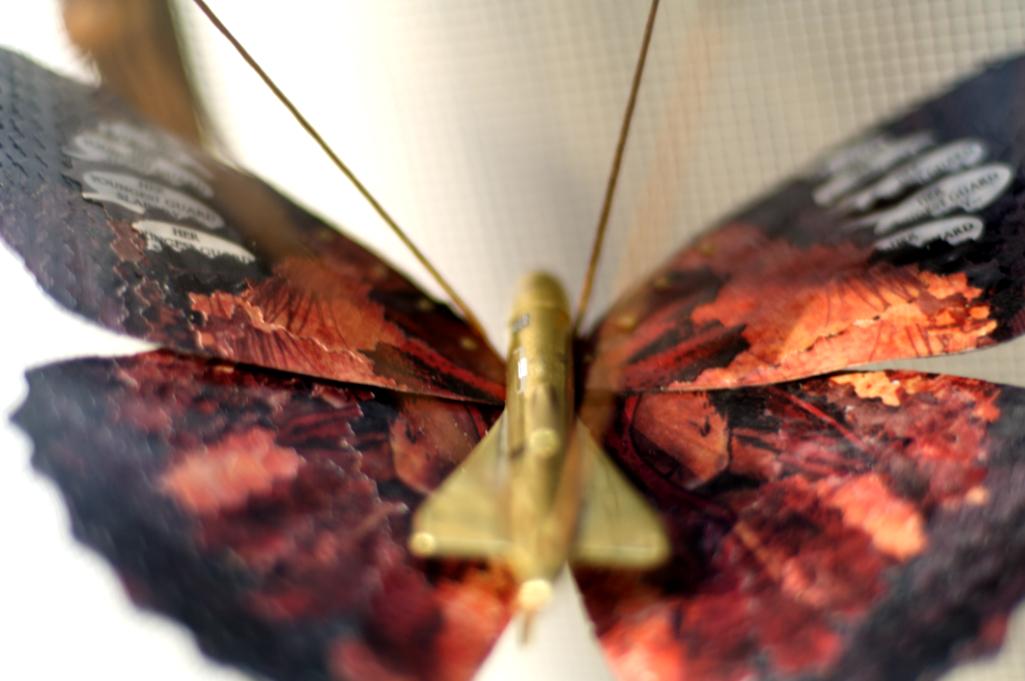 objects_butterflies_detail3_webready