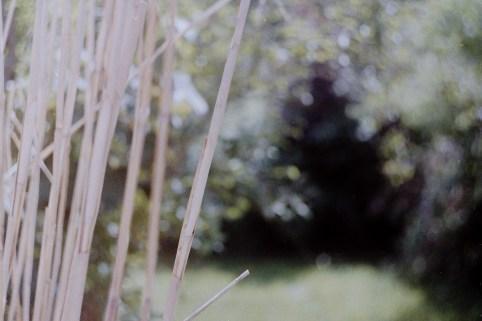 C41 Farbfilm selbst entwickeln mit dem Tetenal Kit