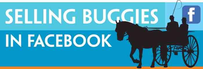 BuggiesHeader