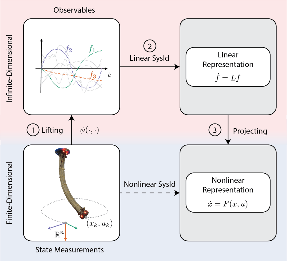 medium resolution of i have used this method to construct a dynamic model of a pneumatic soft robot and predict its behavior video